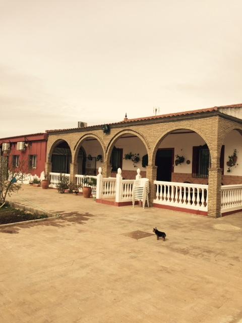 Casa en venta con 180 m2, 3 dormitorios  en Carmona, LOS NIETOS