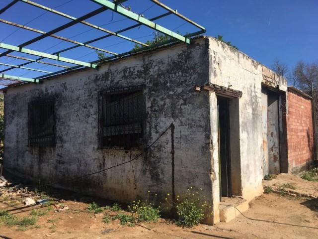 Terreno en venta,  en Carmona, los nietos