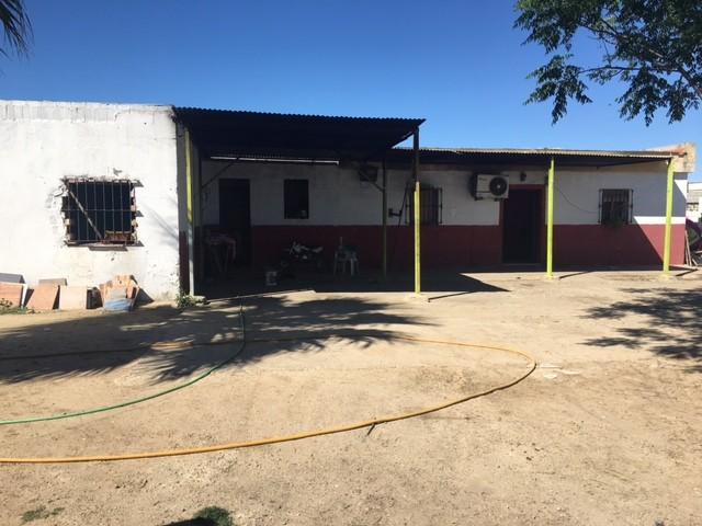 Casa en venta con 120 m2, 3 dormitorios  en Carmona, LOS NARANJOS