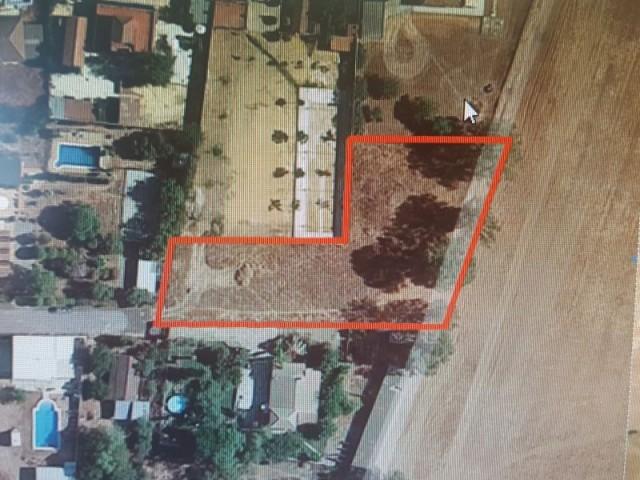 Terreno en venta,  en Carmona, TORREPALMA