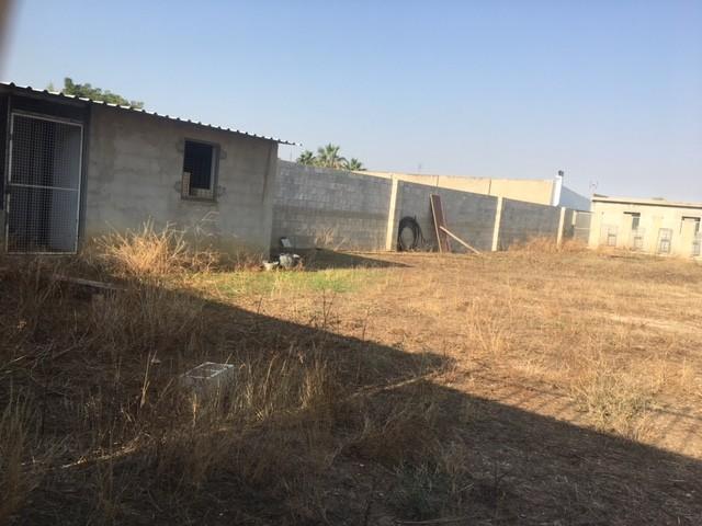 Terreno en venta,  en Carmona, LAS NARANJILLAS