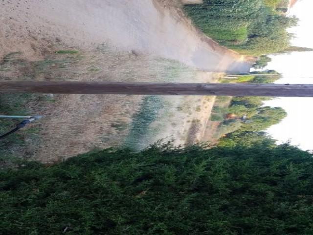 Terreno en venta,  en Carmona, LOS FRUTALES DEL ALCOR